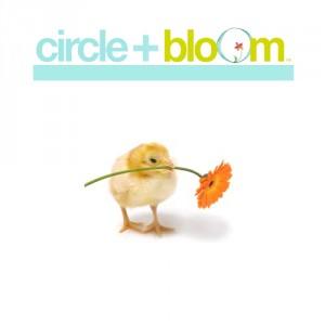 circle_bloom_500