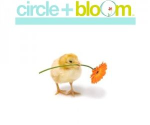 Circle + Bloom Guided Meditations for Fertility